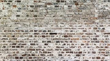 murando - Vlies Fototapete 500x280 cm - Vlies Tapete - Moderne Wanddeko - Design Tapete - Textur Ziegel Mauer Beton f-A-0457-a-a - 2