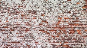murando - Vlies Fototapete 500x280 cm - Vlies Tapete - Moderne Wanddeko - Design Tapete - Ziegel Mauer mehrfarbig Ziegelstein Steine f-A-0452-a-a - 2