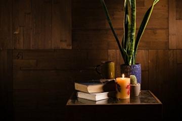 Wandpaneele selbstklebend aus Echtholz von Mywoodwall - Schöne Wandverkleidung - Java (braun), 100% FSC-zertifiziert und Umweltfreundlich, 1 Paket a 1,725m² - 3